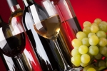 If You Love Fine Wine Invest